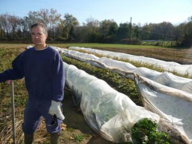 Founder Phil Stober left a 25-year career in marketing to start an organic farm in Lebanon, Pa.