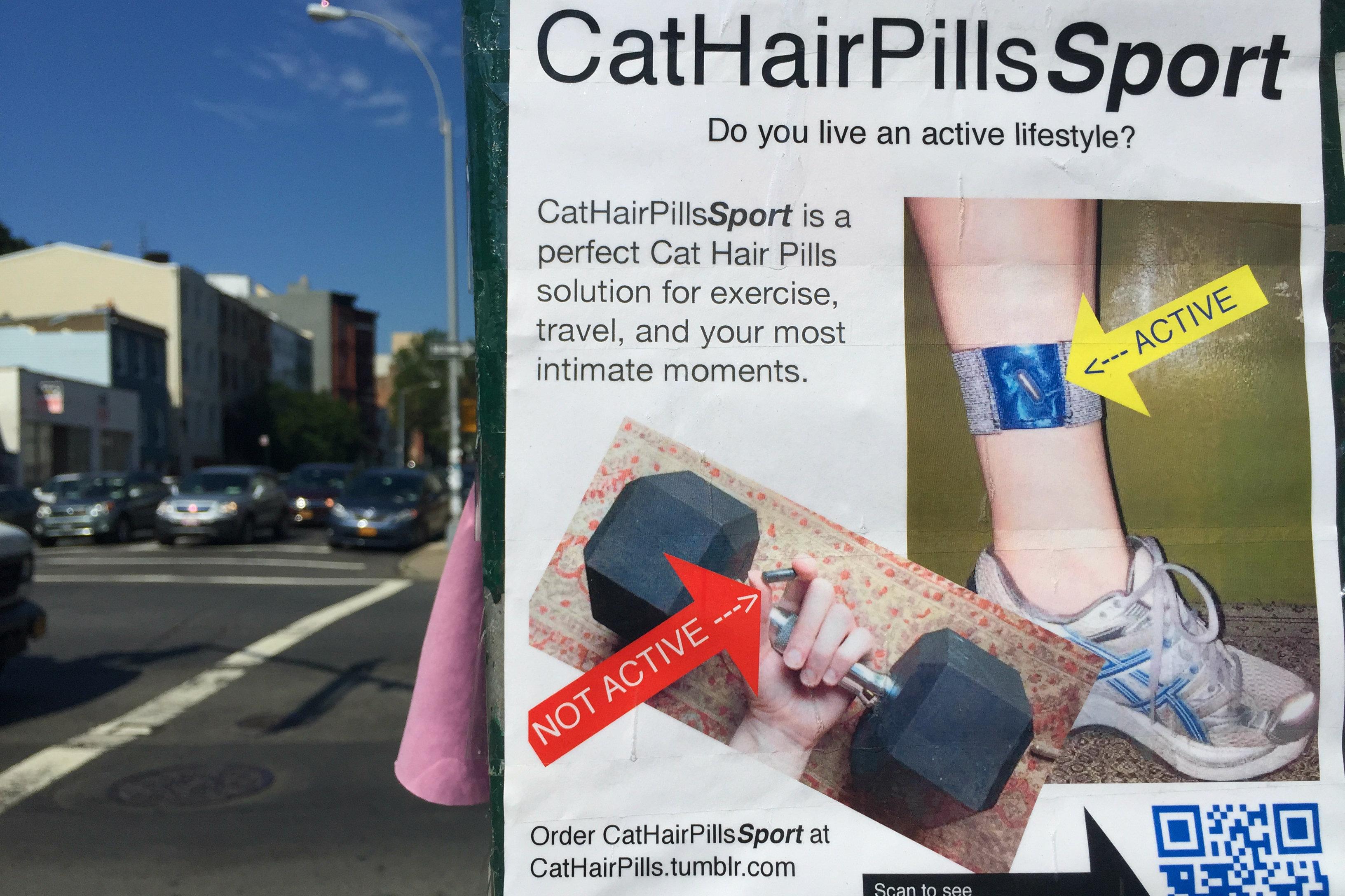 Cat Hair Pills poster