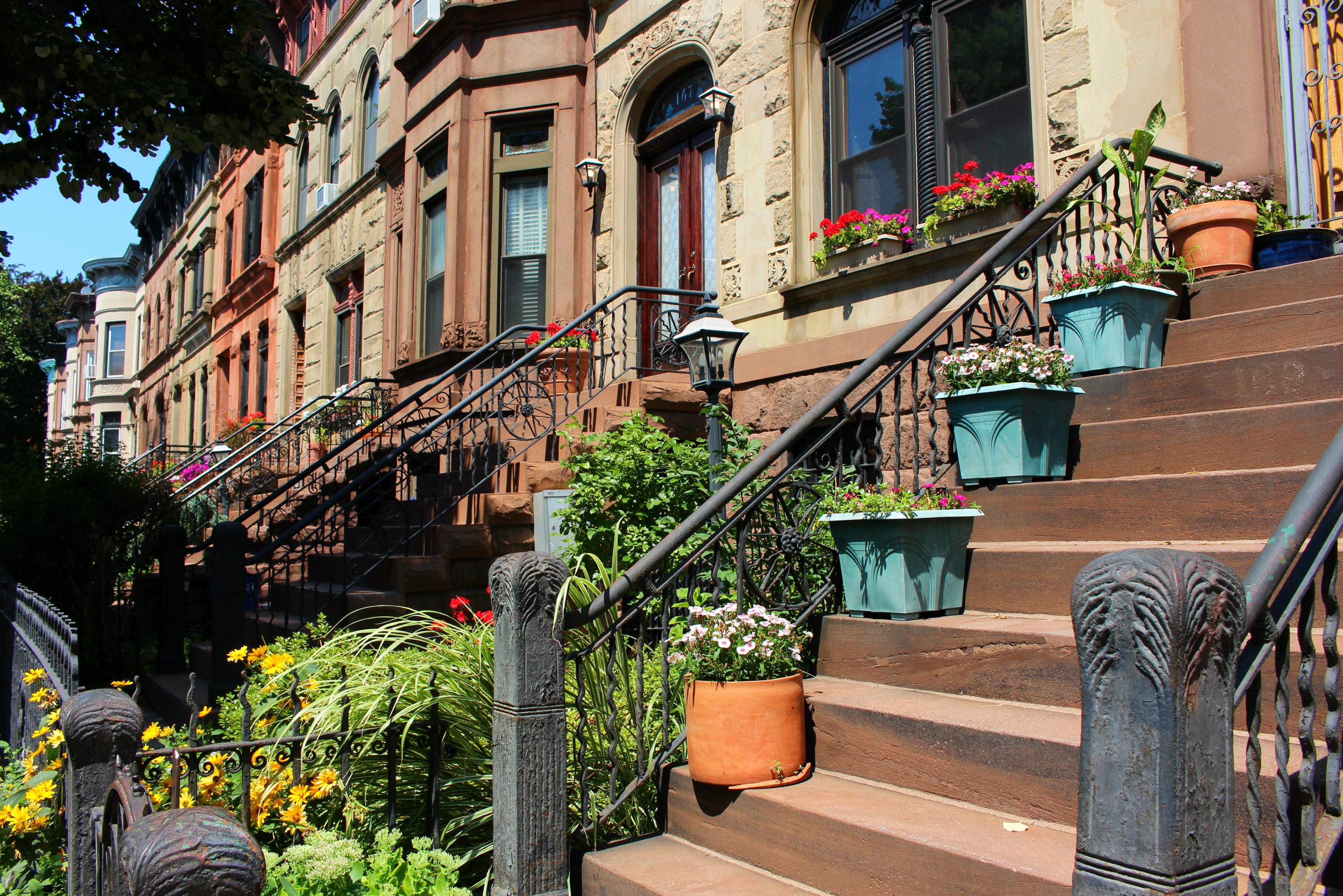 Greenest Block in Brooklyn 4