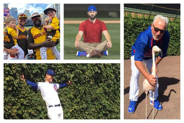 Popular Cubs Twitter accounts include those of (clockwise from top right): Jon Lester, Jake Arrieta, Joe Maddon and Anthony Rizzo.