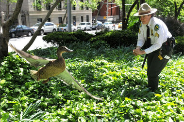 The new unit is a response to a burgeoning wildlife community throughout the five boroughs.