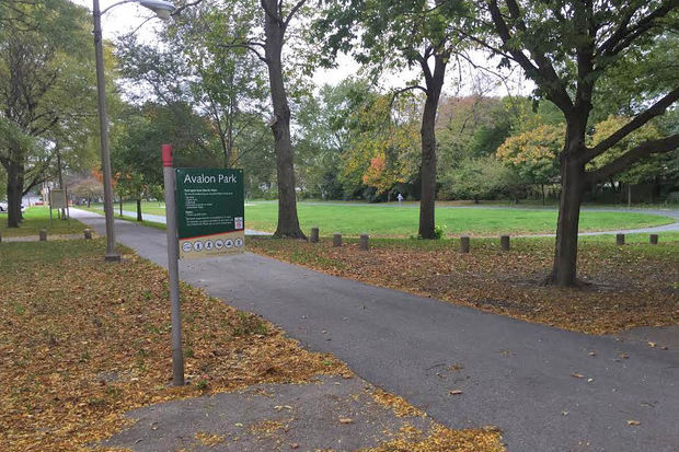 Avalon Park is located at 1215 E. 83rd St.