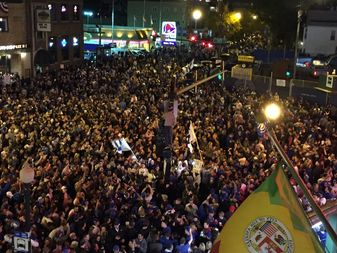 Cubs fans celebrate the National League title.