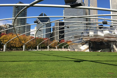 Fall is here in Millennium Park.