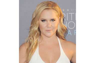 Amy Schumer, pictured here at the 21st Annual Critics Choice Awards, has reportedly purchased a five-bedroom penthouse on Riverside Drive at West 91st Street.