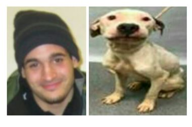 Police arrested Alec Litzinger, 21, and charged him with animal cruelty for stuffing his pit bull into a suitcase and dropping it in a dumpster.