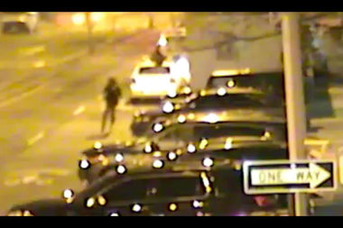 VIDEO: Police Hunt Man Who Set Fire to NYPD Cars