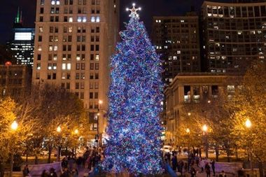 The tree will be lit at 6 p.m. Friday, officials said.