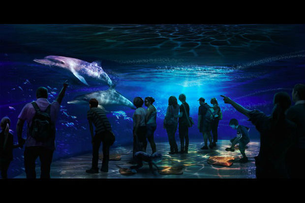"""National Geographic Encounter: Ocean Odyssey"" will take visitors on an ""immersive"" ocean adventure."
