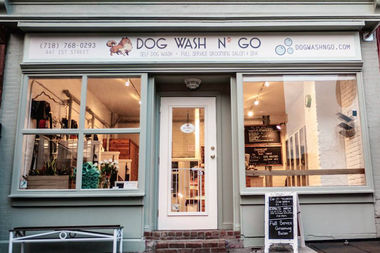 Park slope dog grooming shop expands with new bed stuy outpost bed dog wash n go a dog grooming shop in park slope is solutioingenieria Choice Image