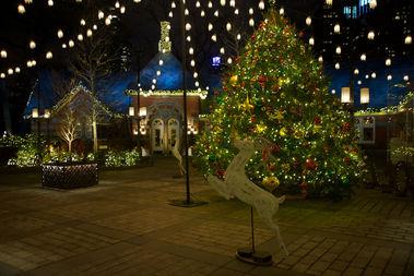 Lighting Of The Christmas Tree Nyc