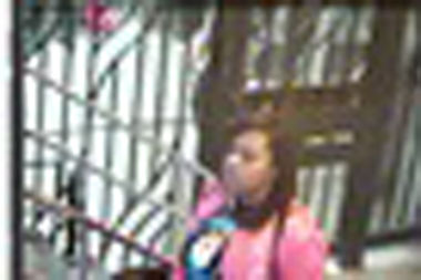 Police are looking for a woman they said used a stolen MetroCard at Canal Street on Nov. 2.