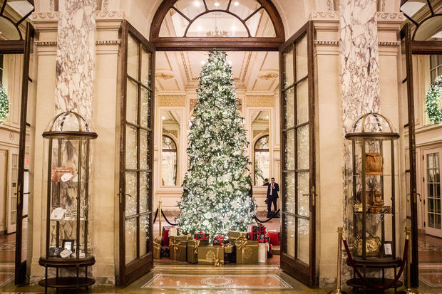 take in the plazas christmas tree while dining at the palm court restaurant on christmas