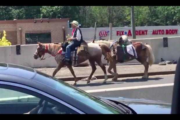 A mysterious cowboy rode a horse across the Outerbridge Crossing on Monday, June 27, 2016.
