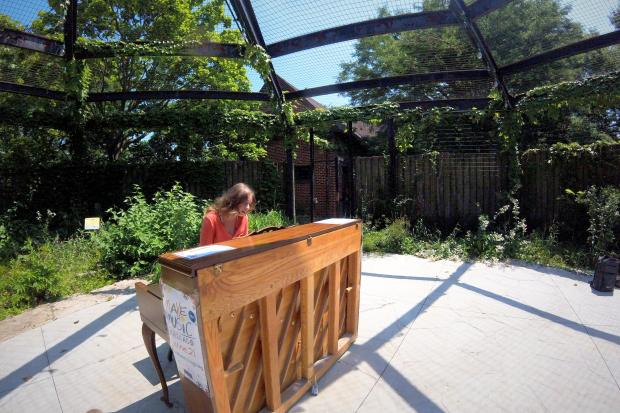 Seven pianos are at parks and beaches across Chicago, waiting for anyone and everyone to sit down and play. Chicago performer Callie Johnson plays at Indian Boundary Park in West Ridge.