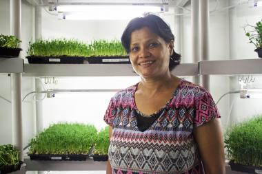 Bidya Rimal of Gracious Greens in front of the family's plants.