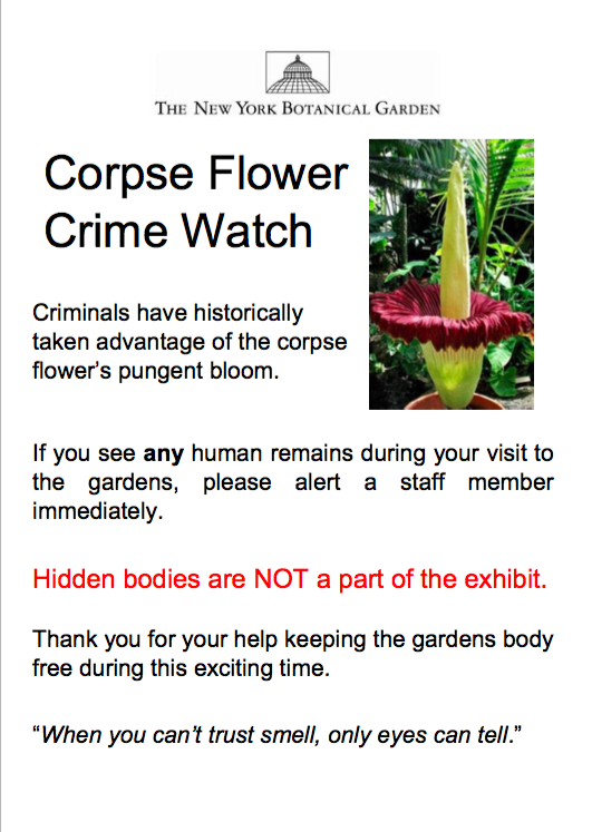 corpse flower poster 2