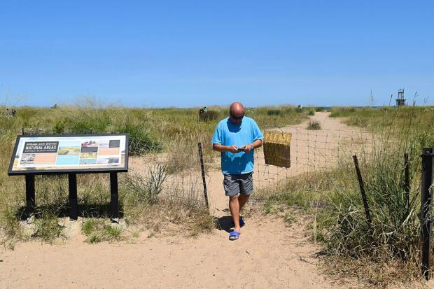 Pokemon Go players are unwittingly trampling endangered plants near a North Side beach, and now theChicago Park District is asking game developers to step in and remove the protected area from the wildly popular game.