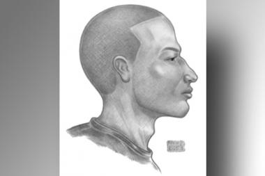 Police released a sketch Thursday of the gunman who fatally shot a retired teacher in Harlem.