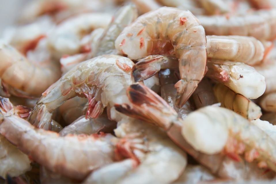 Greenpoint Fish and Lobster Opening Sustainable Seafood Market in LIC - Long Island City - New ...