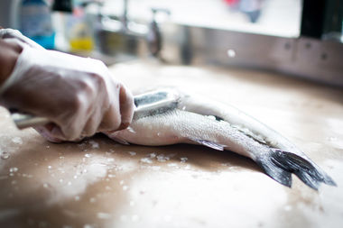 Greenpoint fish and lobster opening sustainable seafood for Fish market queens