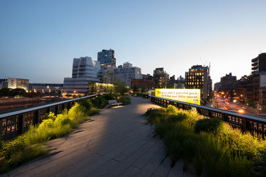 A view of the Chelsea Grasslands on the High Line.