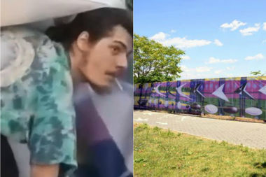 The man suspected in stealing the mural is described as 25 to 35 years old and last seen wearing a multi-colored T-shirt, black shorts and black sandals.