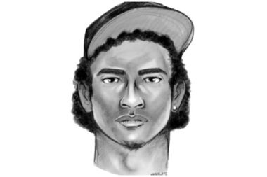 A gang of bicycle thieves has been terrorizing cyclists in Riverside Park with fence posts and tree branches for a month, police said. A sketch of one attacker has been made available.