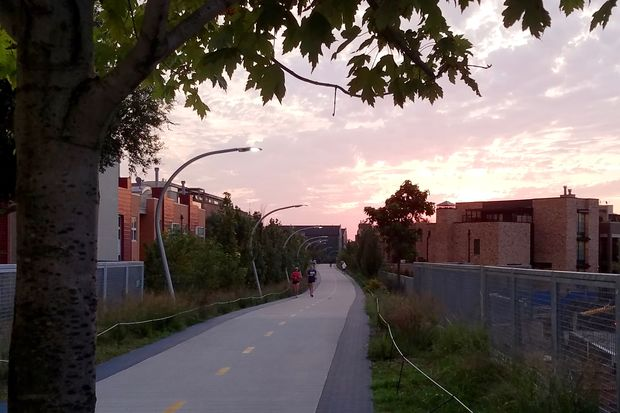 Sunrise on the Bloomingdale Trail