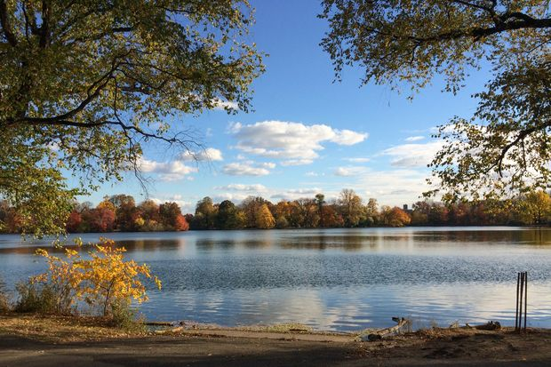 The body of a 19-year-old man was discovered in Prospect Park lake Jan. 2 at 6:50 p.m., police said.