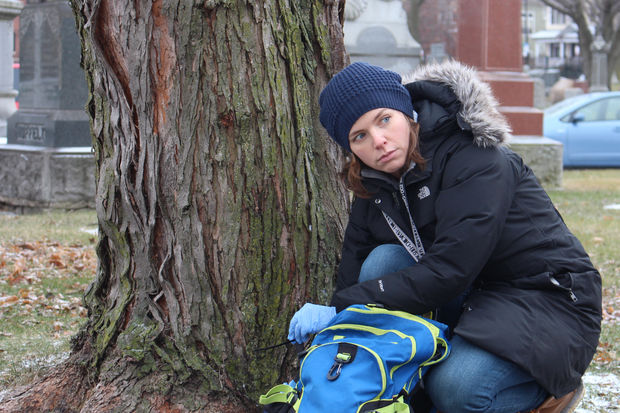 Urban wildlife ecologist Liza Lehrer puts scent bait in the line of a motion-detecting camera at a North Side cemetery. She said the bait smells like