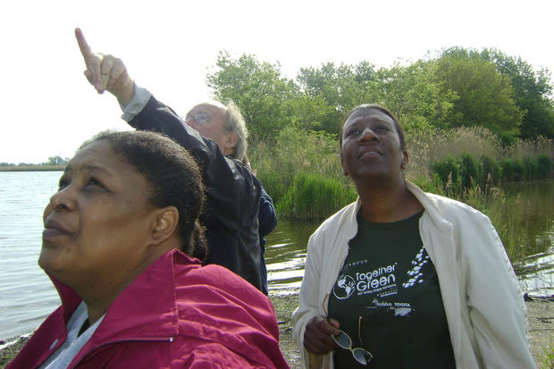 A pair of South Side bird sanctuaries attract birds and birders.