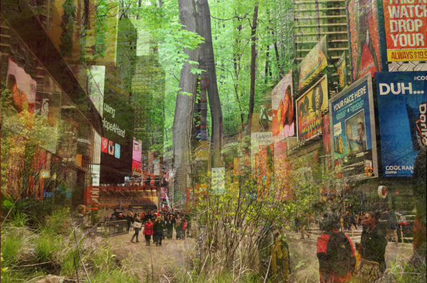 Pop Up Forest Could Grow In Times Square S Pedestrian