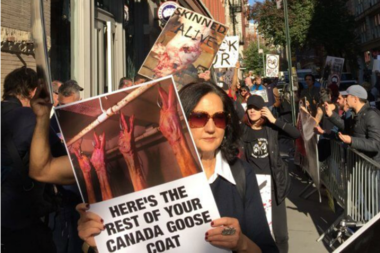 Protesters at the Canada Goose store's opening in November 2016.