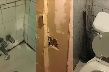 Landlord Forced Us To Live In Filthy Dangerous Basement Family Says West Harlem New York