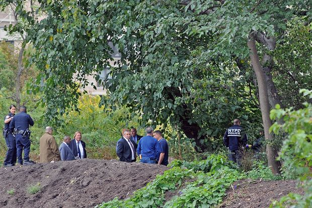 Man's Body Found Hanging from Tree in Central Park, Police Say