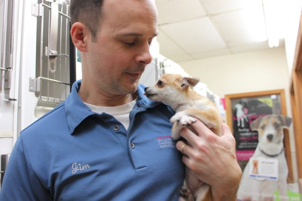 Jim Sparks Jr. owns Park Pet Shop in Mount Greenwood with his father, Jim Sr. Organizers from The Puppy Mill Project have planned a