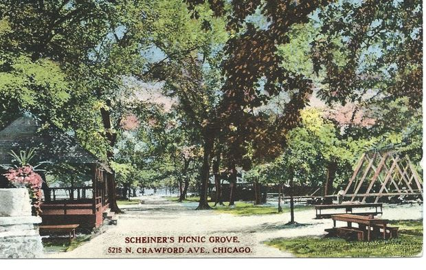 Barry Fleig created a blog to describe the history of Chicago cemeteries, including a cemetery with a liquor license near Scheiner's Picnic Grove.