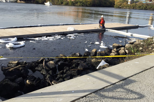 Crews clean up debris from the Chicago River at Eleanor Street Boathouse, 28282 S. Eleanor St.