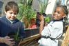 'We Grow Kids': Garden At Gale Elementary Sows More Than Just Plants