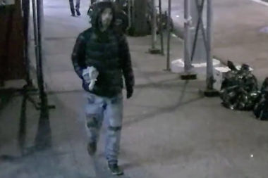 This man repeatedly bludgeoned a woman while trying to snatch her purse in Murray Hill on Feb. 26, according to a police report.