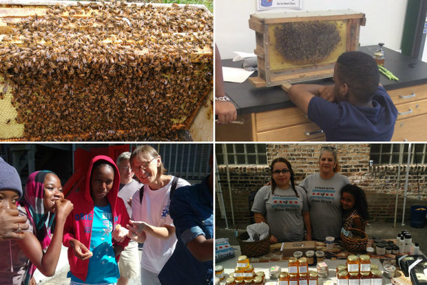 Westside Bee Boyz has hives all over Chicago. Kids get to check out the hives, taste honey directly from a hive and help sell products made from honey.