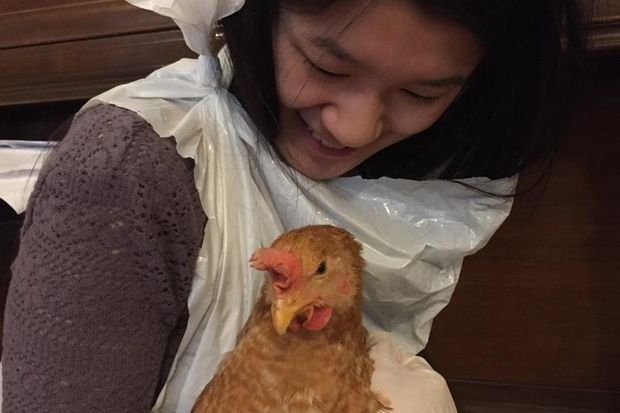 Juliana Clark, 16, found a hen wandering the streets near Grand Army Plaza on Monday and has been looking for the bird's owner. Clark and her neighbors were displaced from their apartments at 88 Prospect Park West after a fire earlier this month.