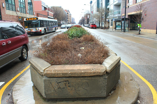 Ald. Walter Burnett Jr. (27th) is considering removing the median planters on Madison Street.