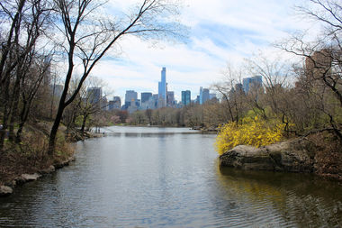 A view of Central Park Lake in spring — not unlike the one a 79-year-old woman saw before being attacked Tuesday evening.
