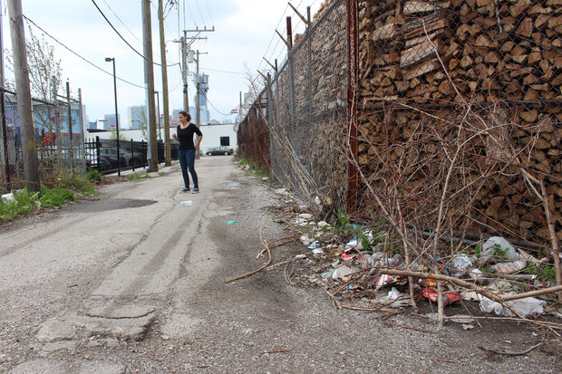 Sara Colombo looks over an alley near the Jellyvision offices before Friday's cleanup.