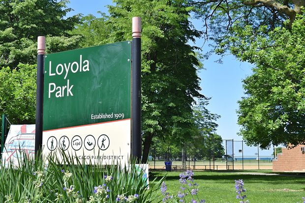 Shots rang out during a youth baseball game at Loyola Park Tuesday evening, according to police and parents.