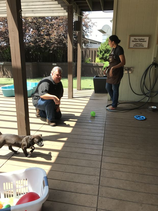 Jim O'Heir meets and plays with PAWS pets.
