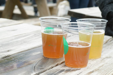 Buy tickets for Saturday's Independence Park Beer Fest in advance and save $10.