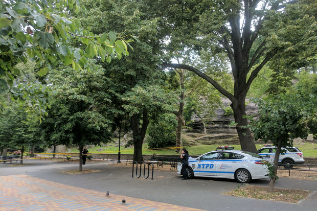 The man was taken to the hospital after being shot in Marcus Garvey Park, officials said.